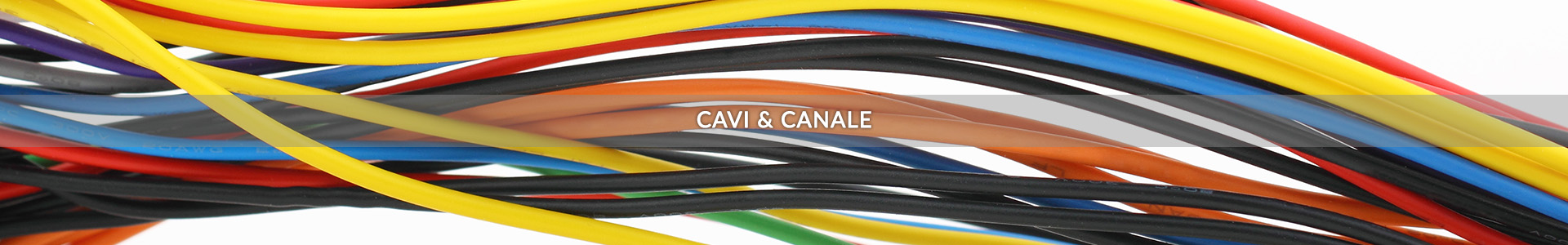 Cables and Trays